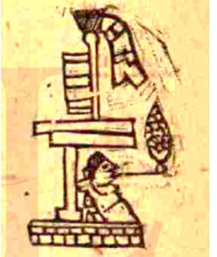 Significado de la palabra Tocuila