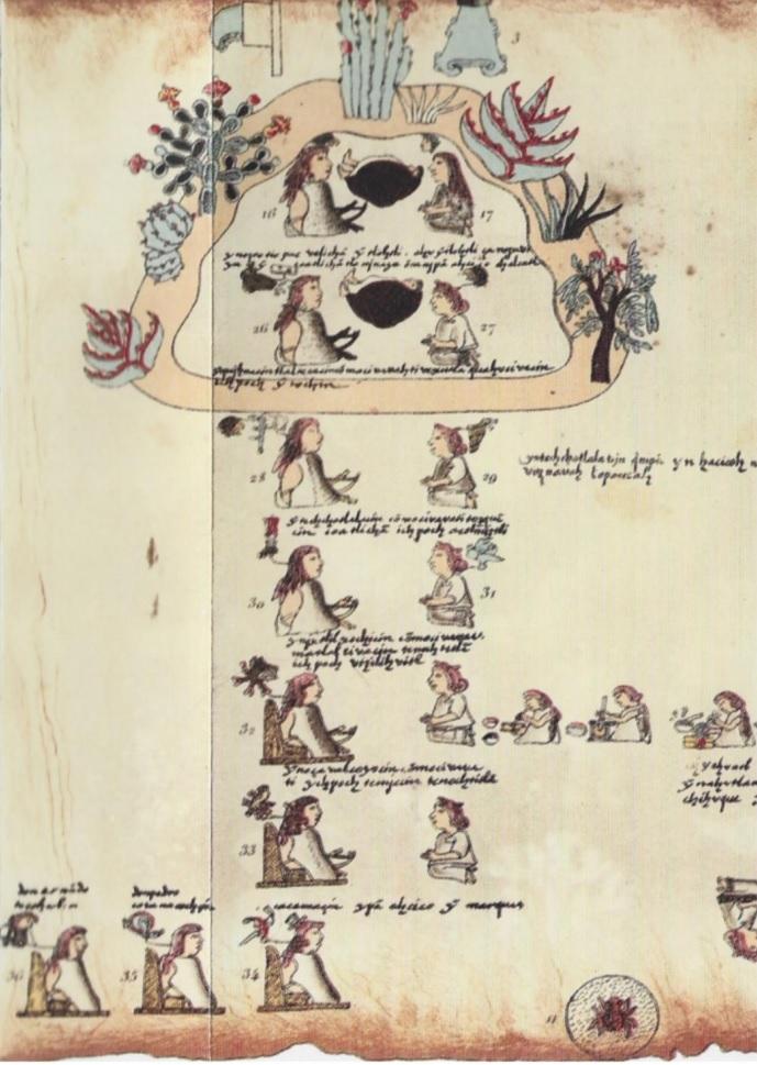 Reescribir la historia para resistir al olvido: Estrategias historiográficas indígenas de tradición nahua-acolhua hacia el siglo XVI